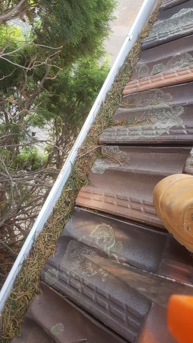 Overflowing/blocked gutters