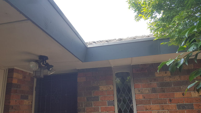 Replaced facia on damaged roof
