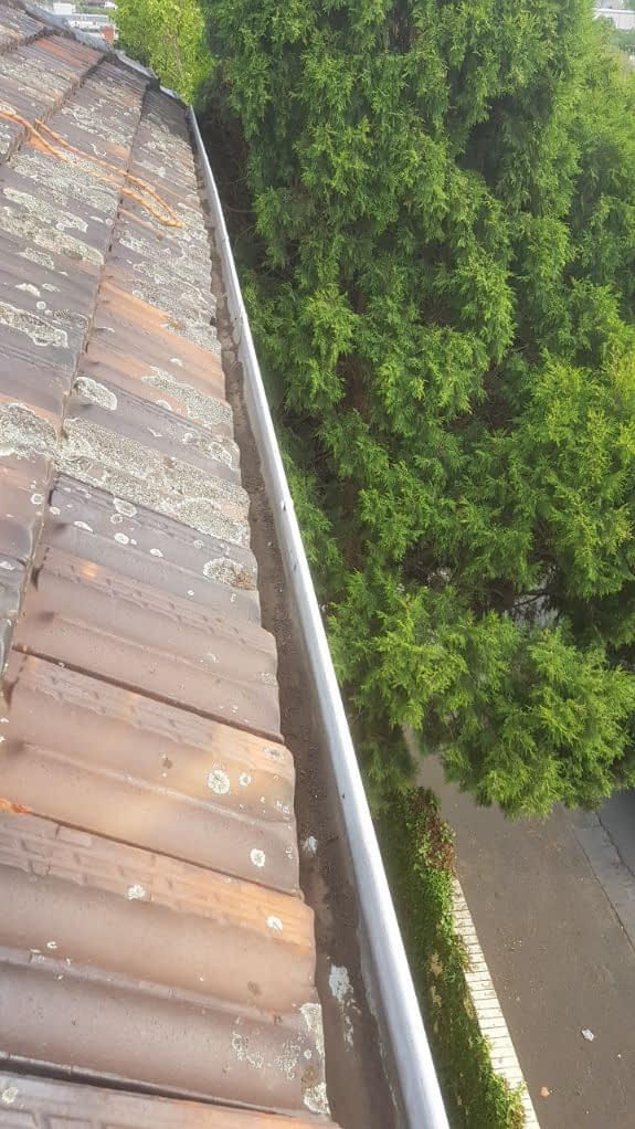 Cleaned gutters on tiled roof