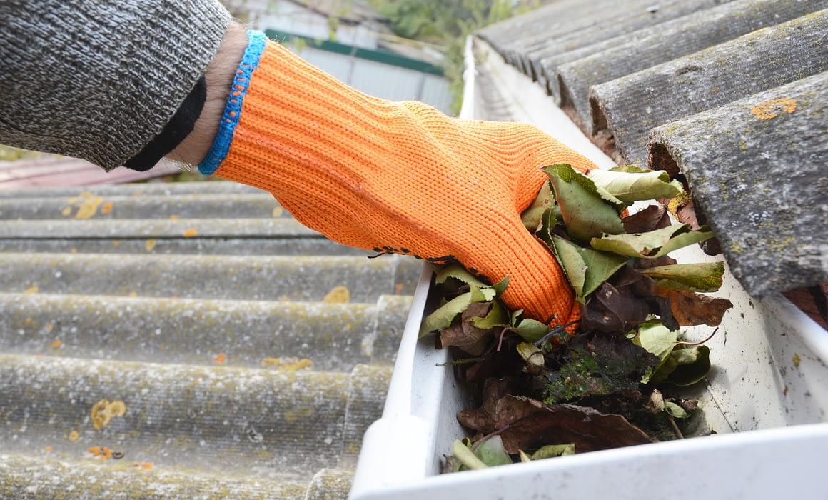 roof repairs parkdale